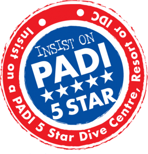 5 star PADI dive courses