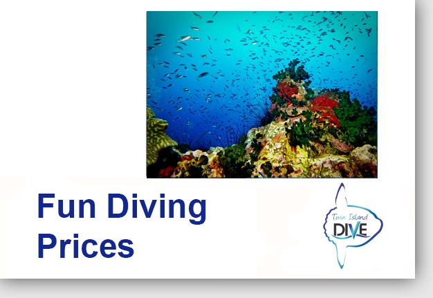 Fun Diving Prices - diving penida
